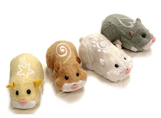 Hot Christmas Toy for 2009 - Zhu Zhu Pets