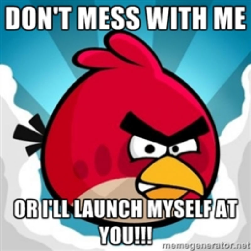 | 5 Angry Birds Memes That Will Make You LOL