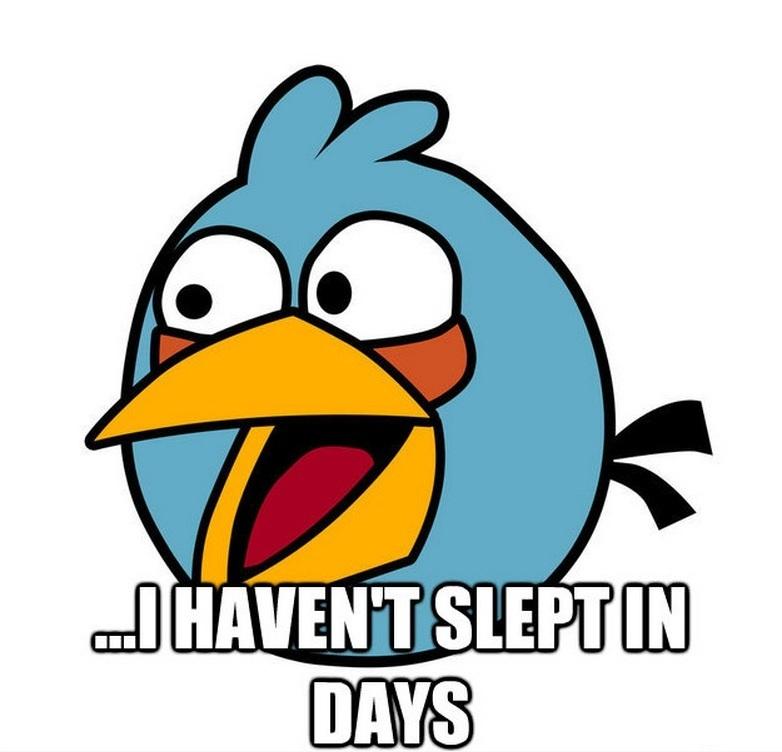 Insomnia Angry Birds Meme
