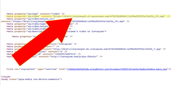 embed this instagram video mp4 code