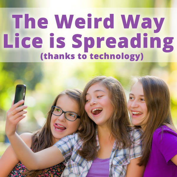 lice and selfies the weird way lice is spreading thanks to technology