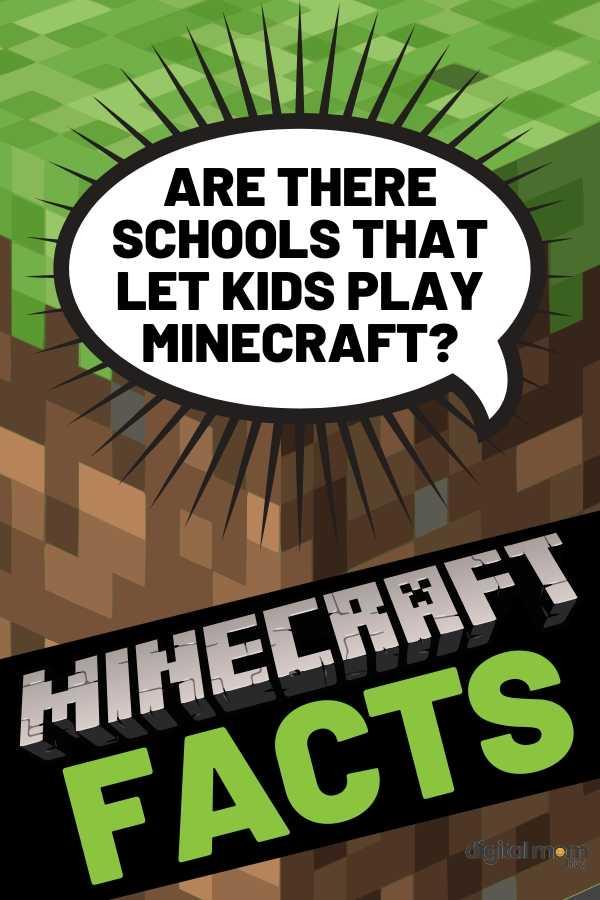 minecraft schools