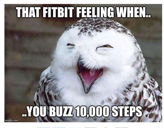 That 10000 step Fitbit buzz