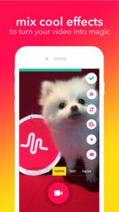 musical.ly app for tweens