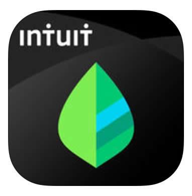 mint app - new years resolutions app