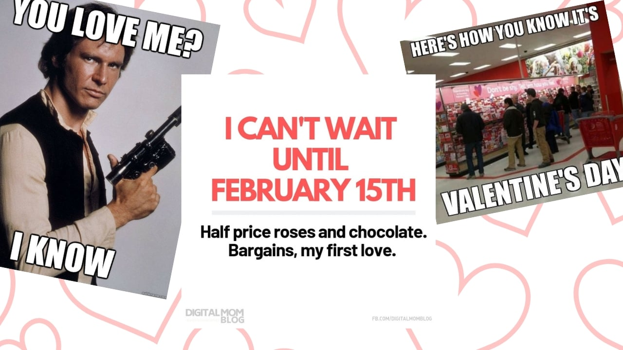 Best Valentine Memes for Singles, Valentine Day Haters and Cheap People