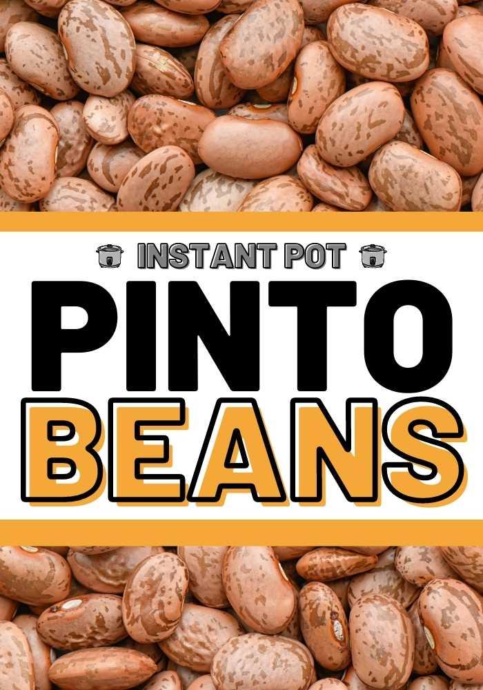 instant pot pinto beans mexican recipe