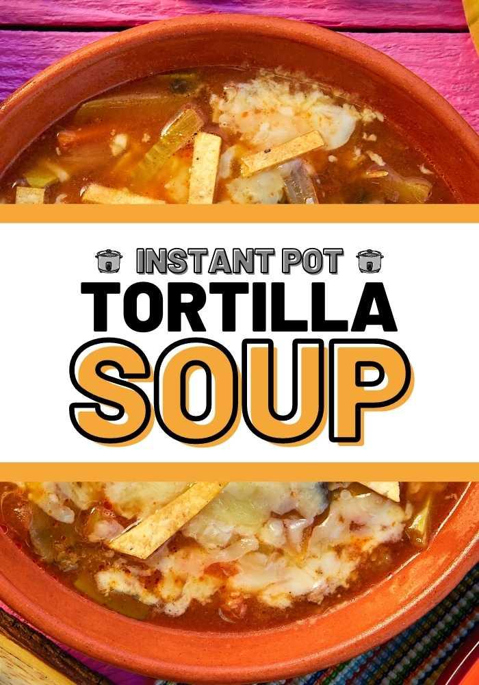 instant pot tortilla soup mexican recipes