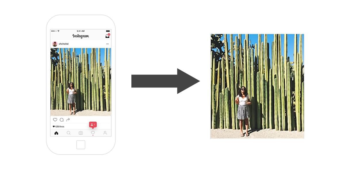 download-instagram-photos-video