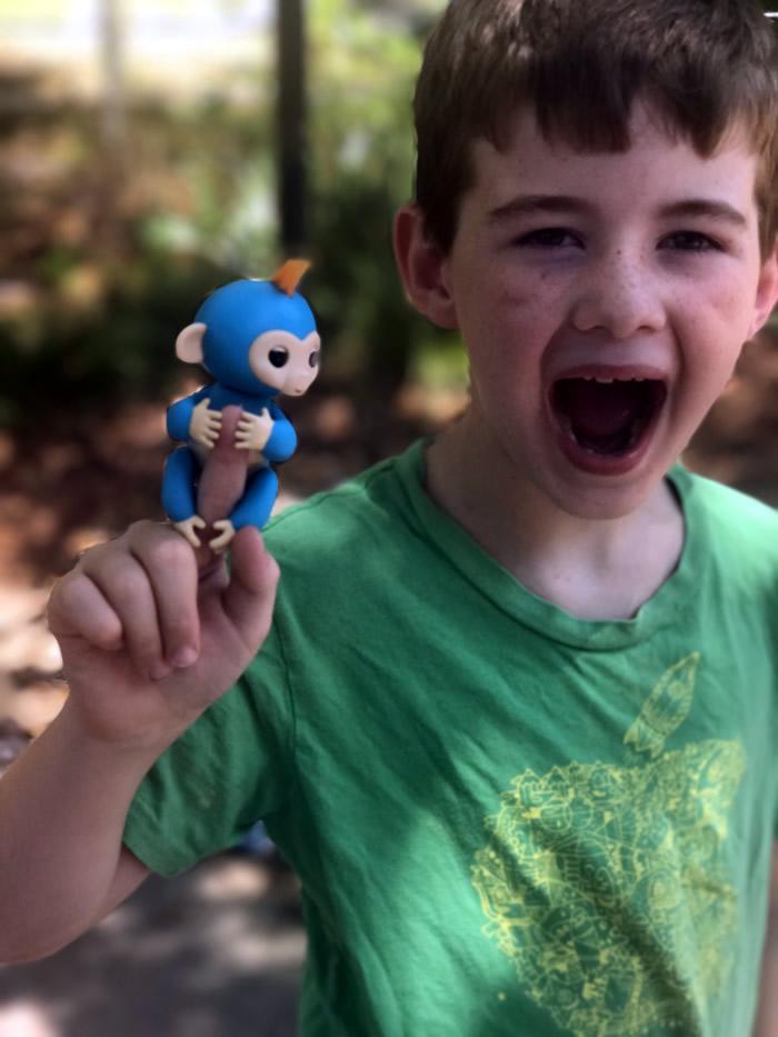fingerling monkey