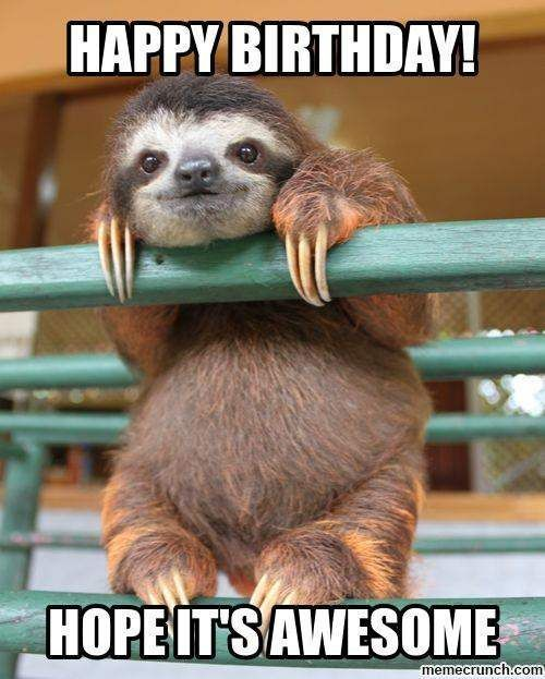 hope you birthday is awesome sloth meme