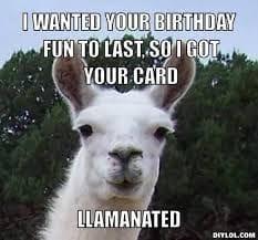 llama birthday graphic - i wanted your birthday fun to las so i got your card llamanated - llama pun