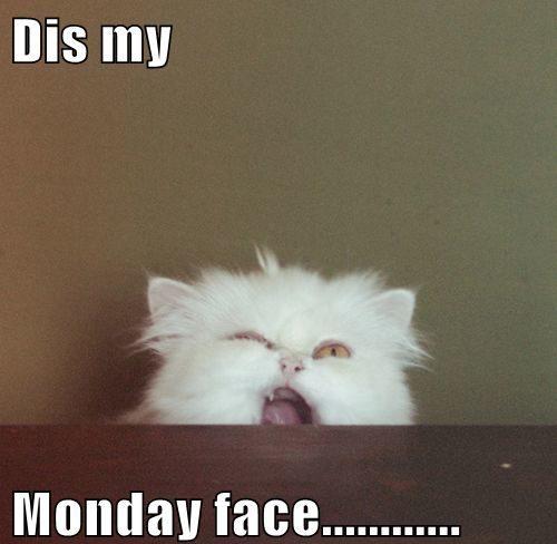 dis my monday face - funny monday meme