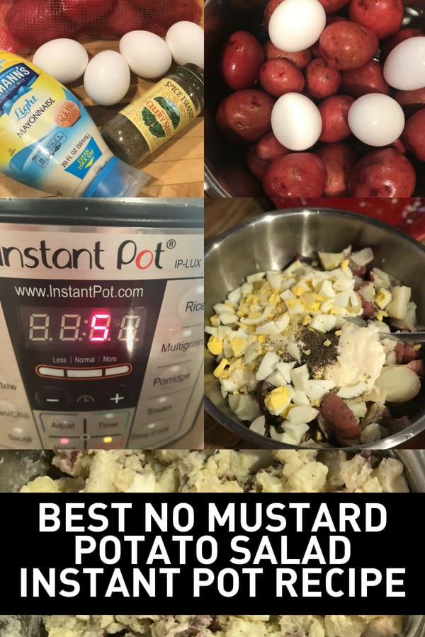 Ingredients and how to make no mustard potato salad