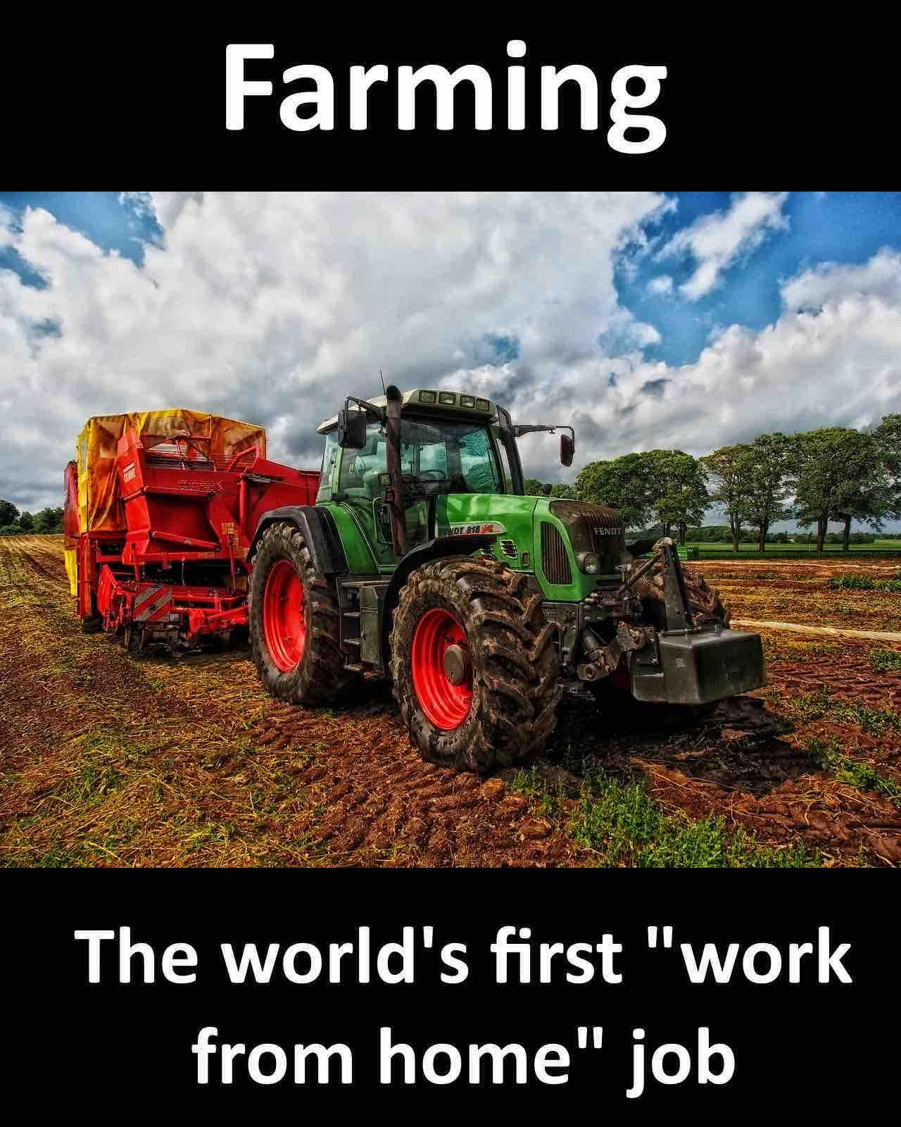 farming first wfh job