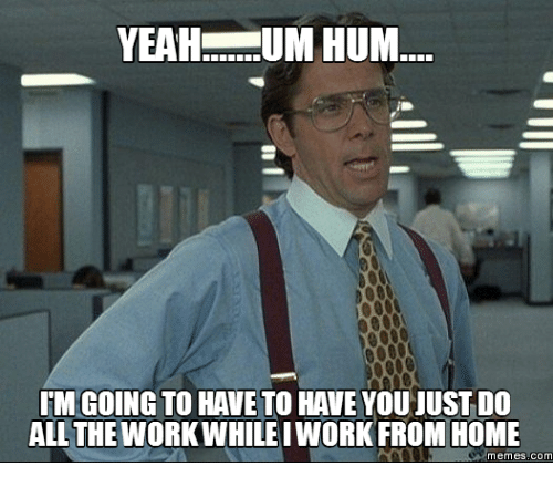 working from home meme 6