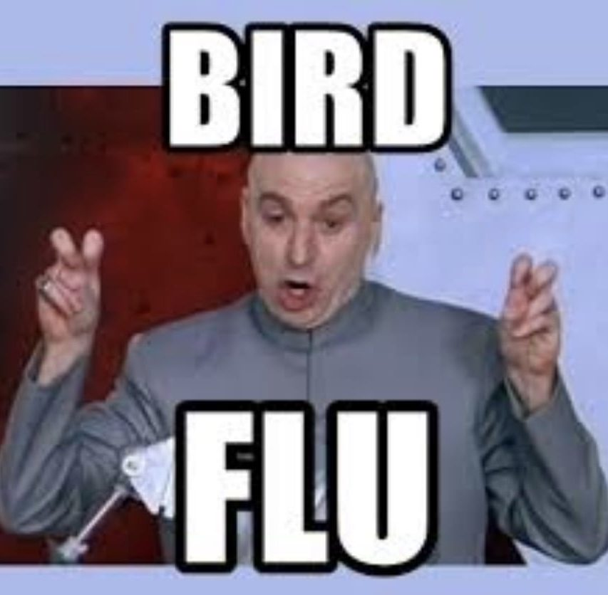 Dr Evil Bird Flu Meme