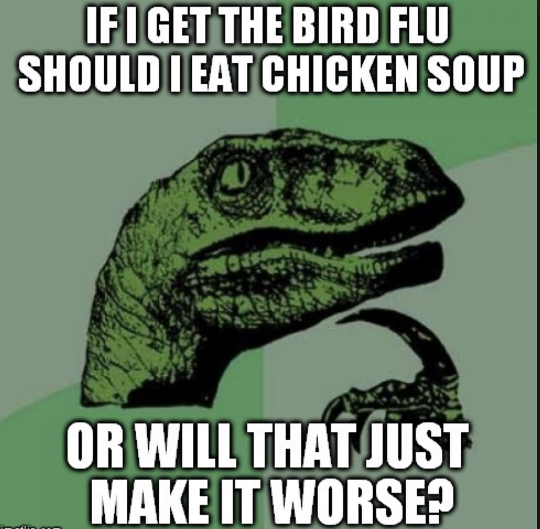 If I get the bird flu should I eat chicken soup or will it make it worse - dinosaur meme