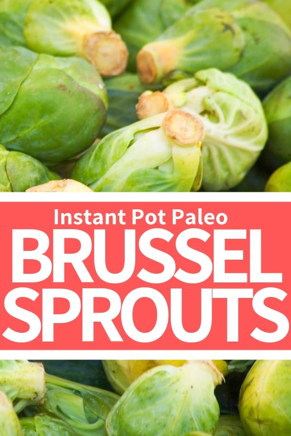 paleo instant pot brussel sprout recipes