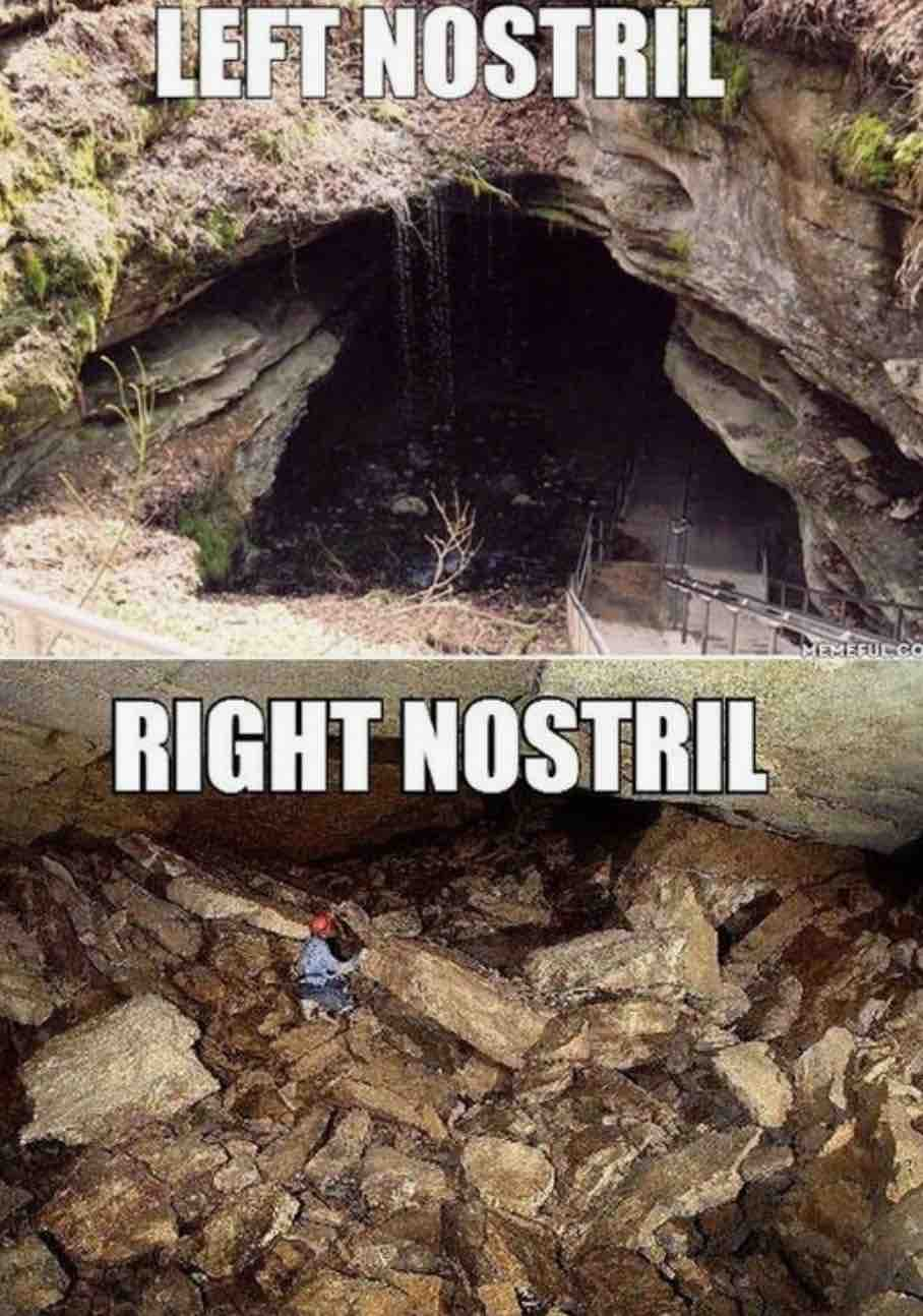 cave left nostril right nostril funny flu image