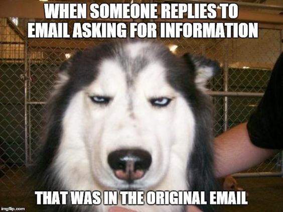 email meme about annoying coworkers