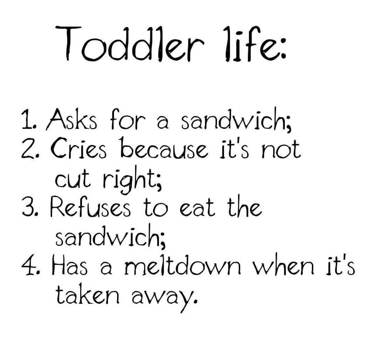 Toddler Life Meme