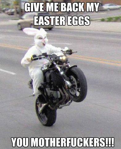 easter bunny meme motorcycle
