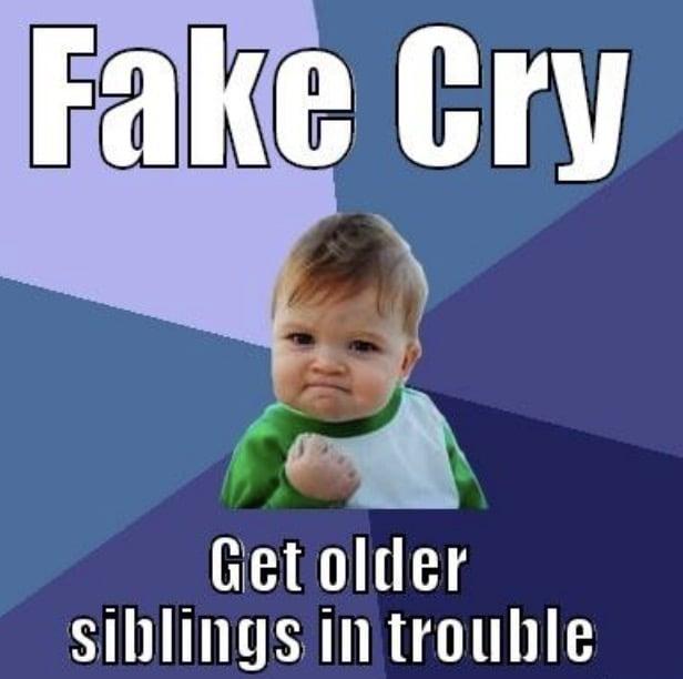 fake cry meme