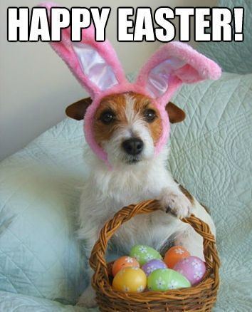 happy easter images dogs