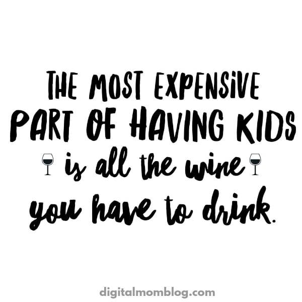 the most expensive part of having kids is all the wine you have to drink