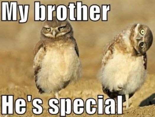 special brother meme