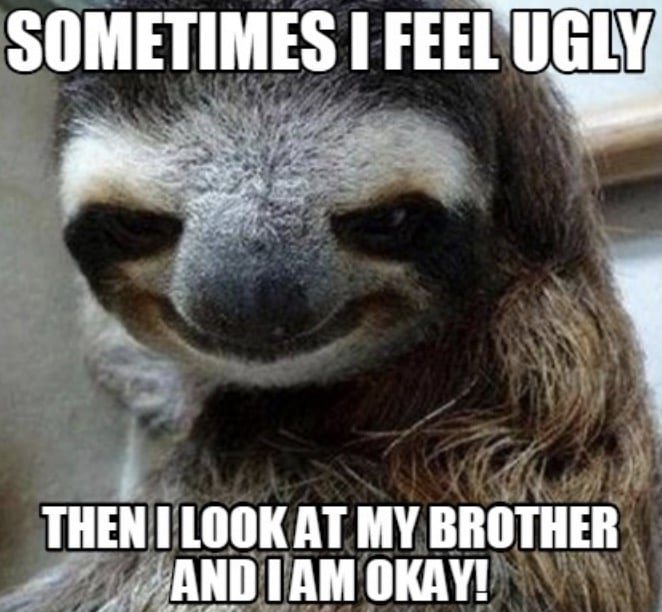ugly brother meme