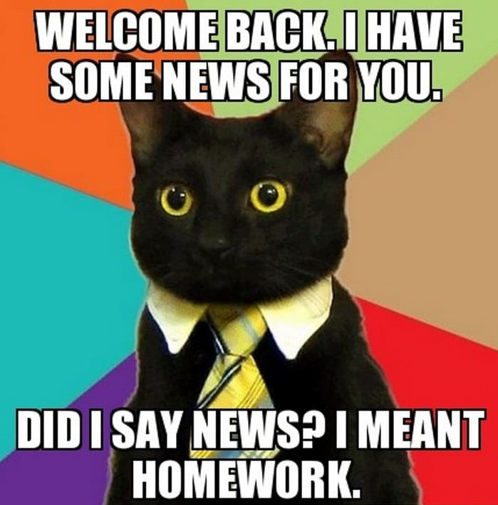 welcome back i have some news for your i meant homework