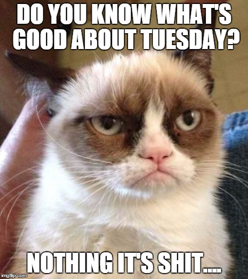 good about tuesday