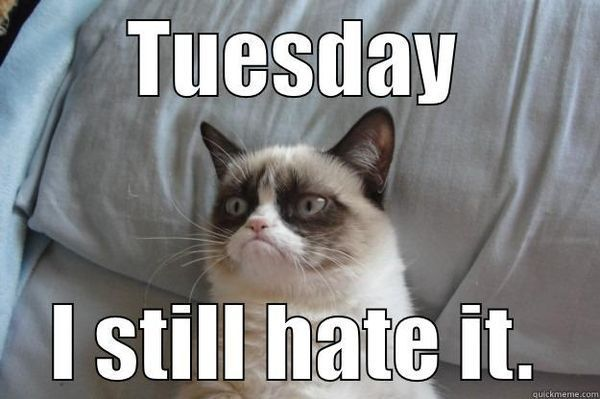 Tuesday, I still hate it