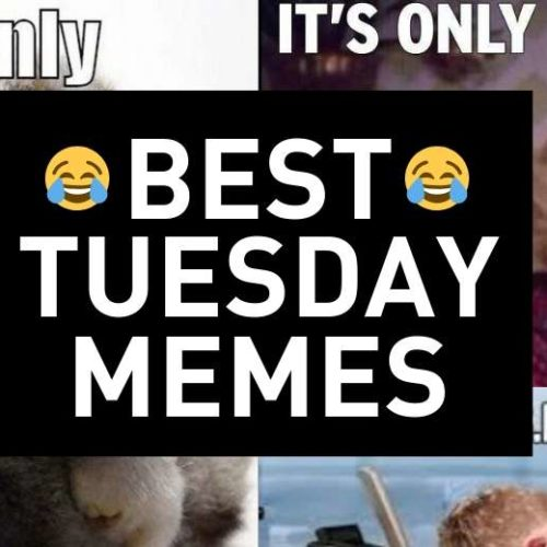 Tuesday Memes – Laugh Even Though It's Only Tuesday!