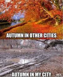 autumn weather - fall weather memes