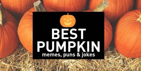 Funny Pumpkin Memes, Puns and Fun