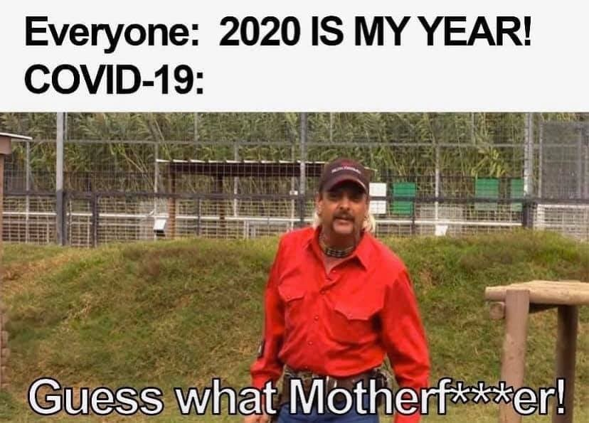 2020-is-my-year-meme-