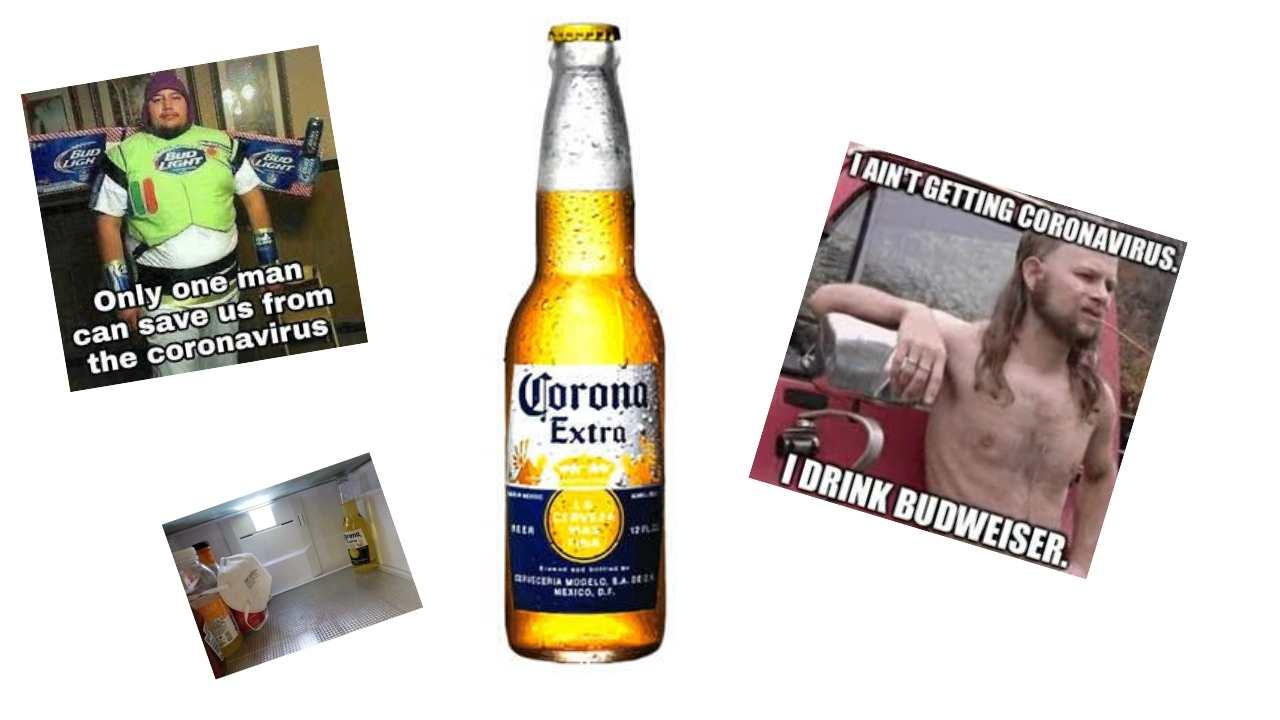 corona beer memes