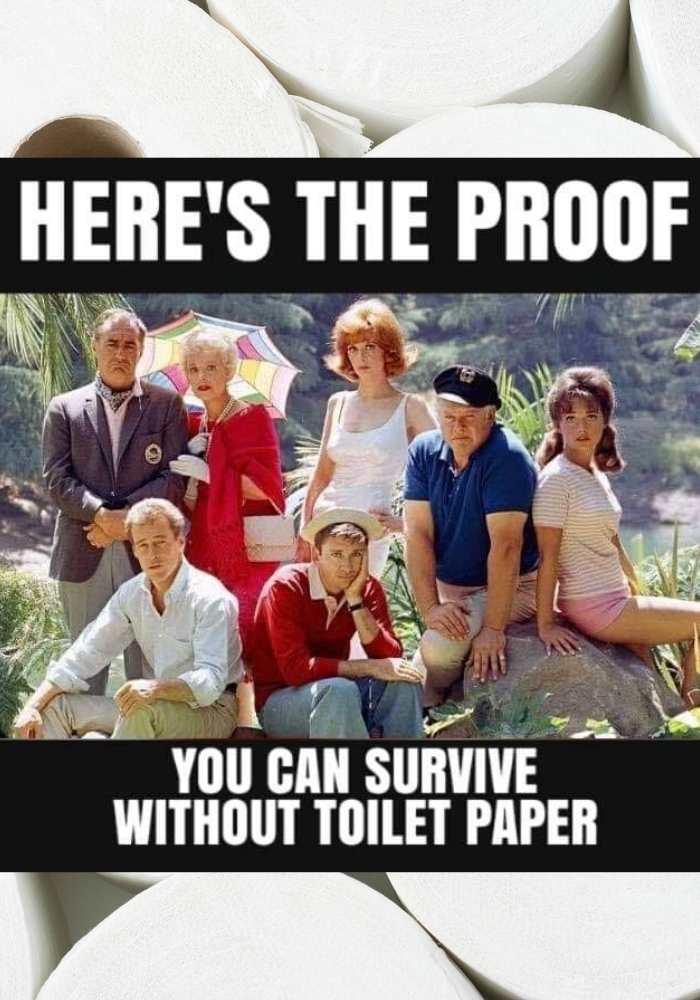 gilligans island survive without toilet paper meme