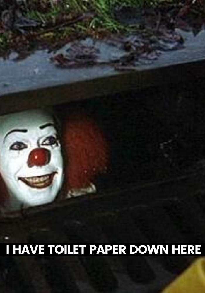 it meme toilet paper down here