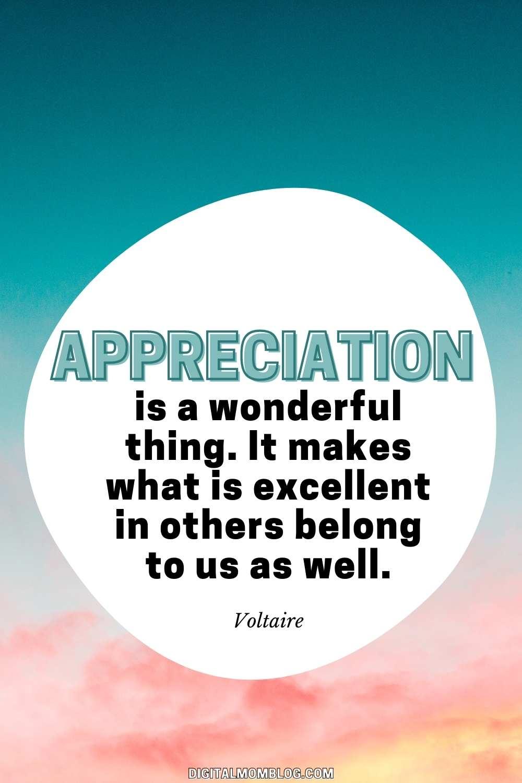 Appreciation Quote by Voltaire