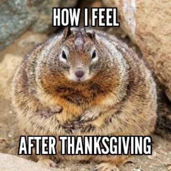 Eating too much on Thanksgiving - Funny Meme