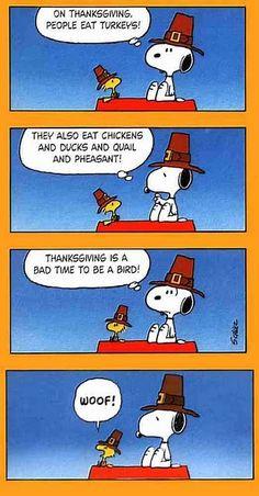 charlie brown thanksgiving snoopy meme