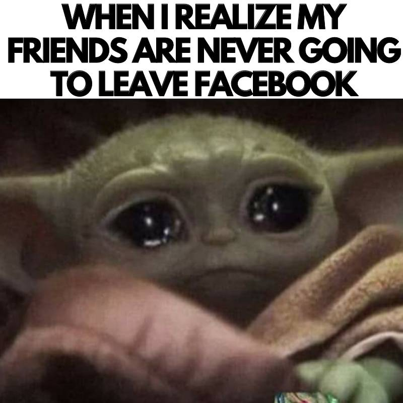 facebook-meme-friends