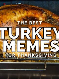 funny turkey memes for thanksgiving