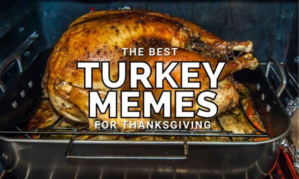 Funny Turkey Memes for Thanksgiving 2020