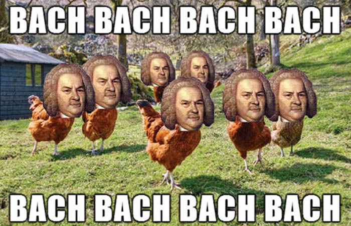 Funny Turkey Image Bach Gobble