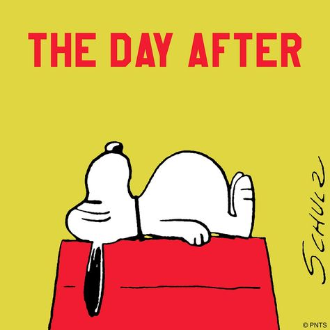 the day after thanksgiving snoopy meme